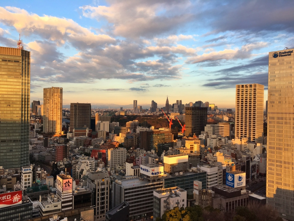 View, Capitol Hotel Tokyu