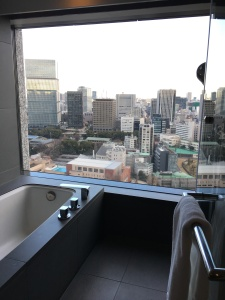 Amazing bath and view, Capitol Hotel Tokyu